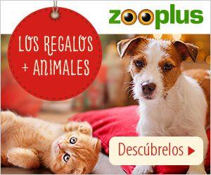 zooplus 300x250 - zooplus