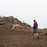 deforestación 150x150 - Formas en que puedes contribuir a los esfuerzos contra la deforestación