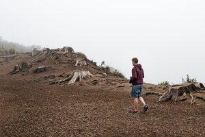 deforestación 300x200 - deforestación